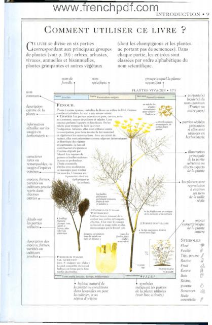 Télécharger livre: Plantes aromatiques et médicinales pdf gratuit. 3