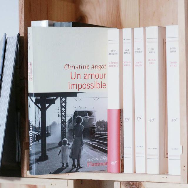 Un amour impossible en PDF de Christine Angot 1